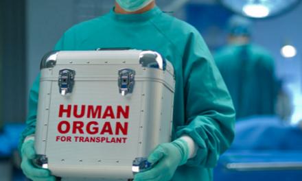 Despre etica transplantului hepatic divizat